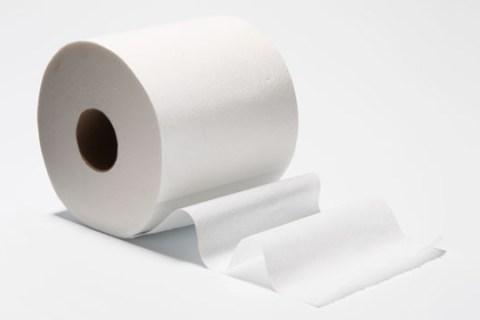 Fake Toilet Paper